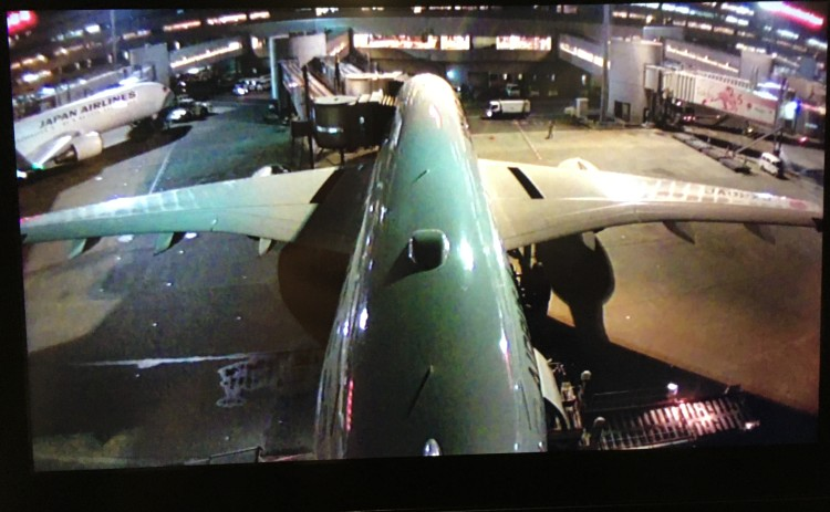 A350IMG_3907-3.jpg