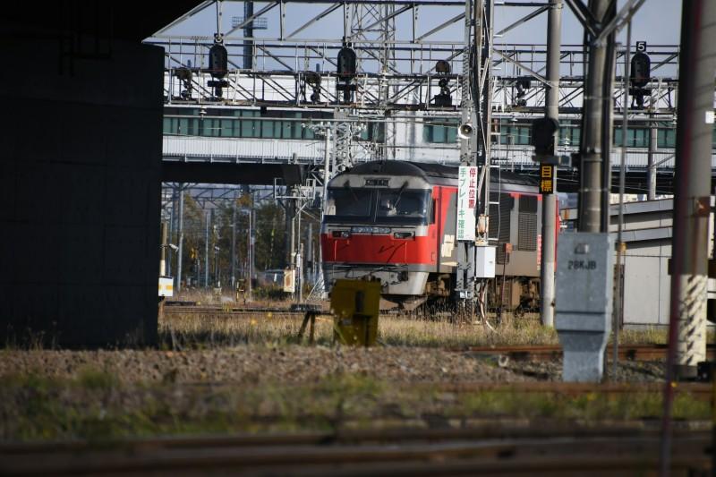 DF104DSC_4155-1.jpg