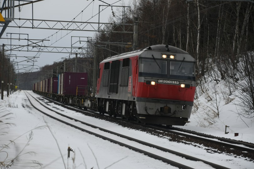 DF113DSC_6863-1.jpg