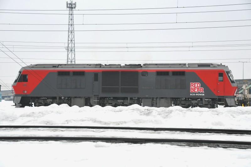 DF118DSC_6609-2.jpg