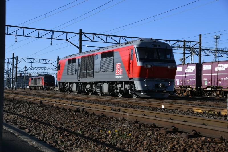 DF121DSC_4081-1.jpg