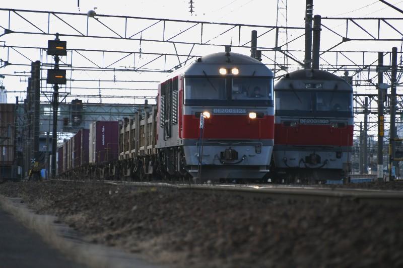 DF121DSC_4695-2.jpg