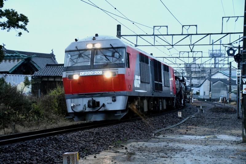 DF206DSC_7136-2.jpg