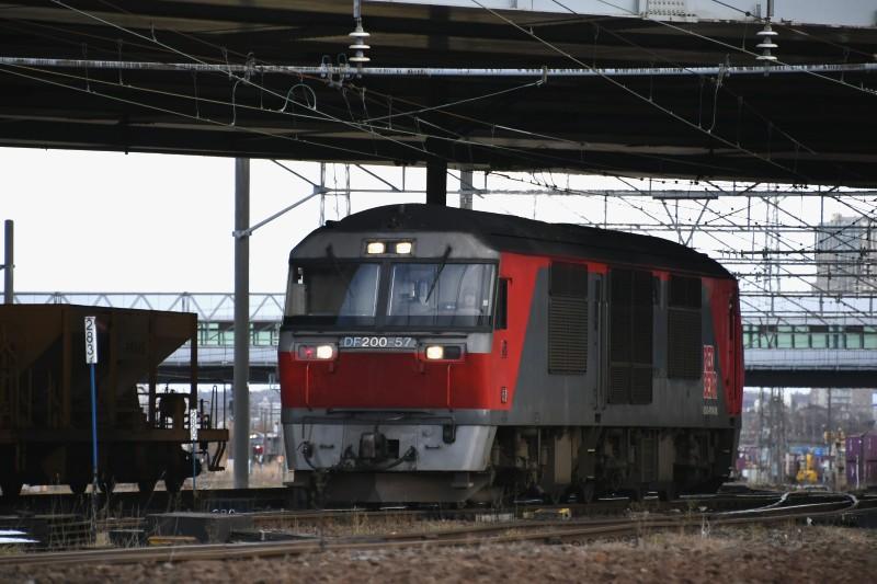 DF57DSC_4707-2.jpg