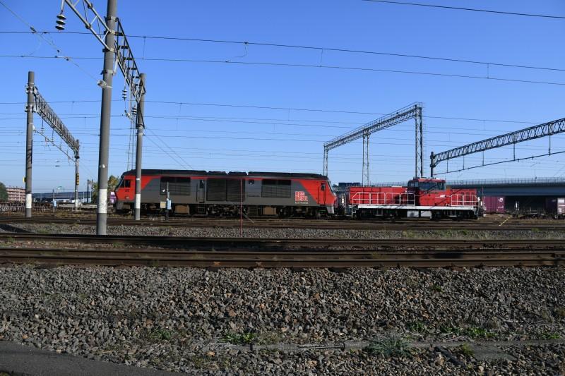 DF58DSC_3968-1.jpg