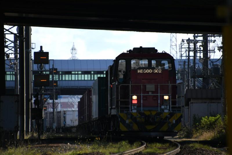 HD502DSC_3938-2.jpg