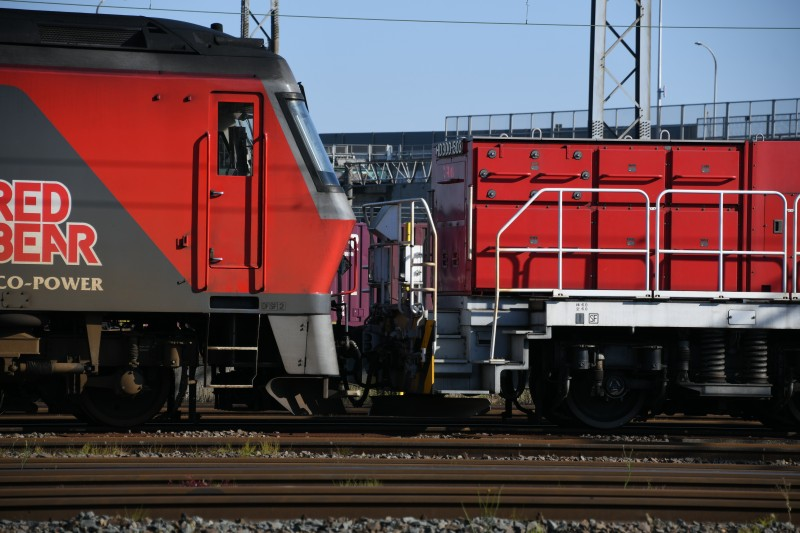 HD503DSC_3973-1.jpg