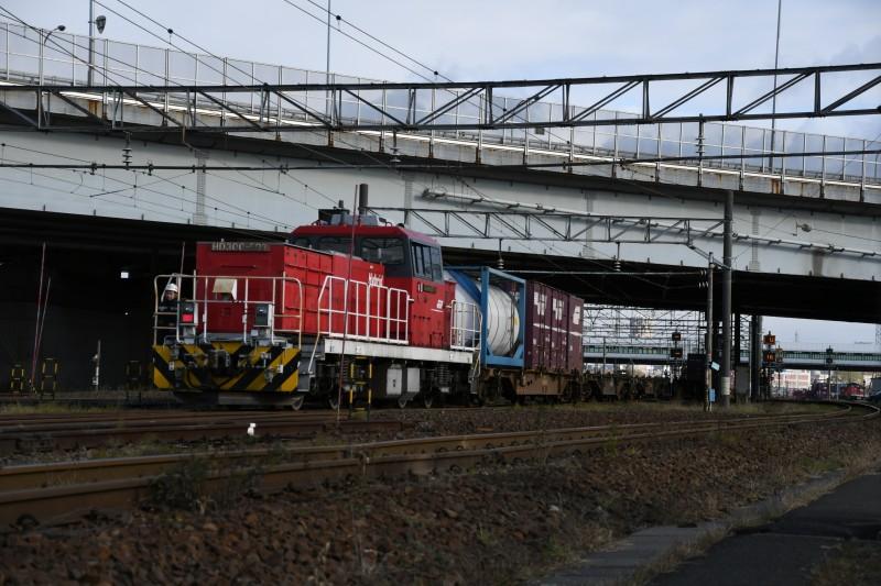 HD503DSC_4319-1.jpg