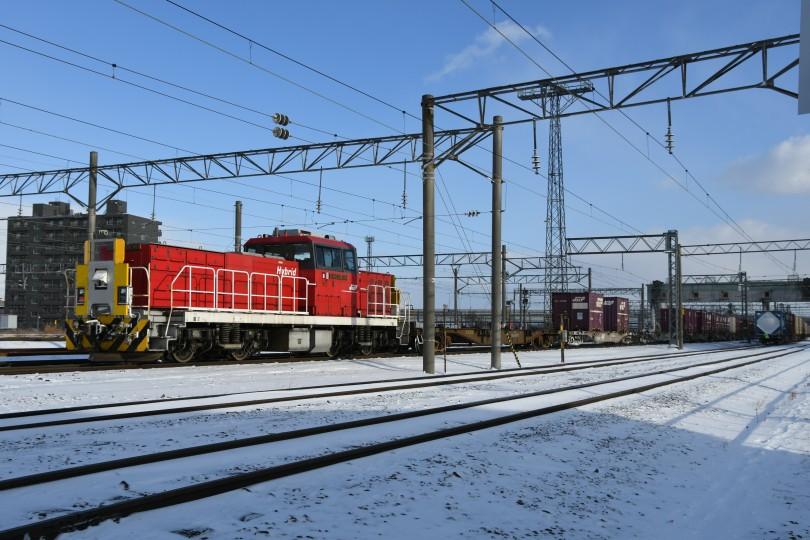 HD503DSC_5235-1.jpg