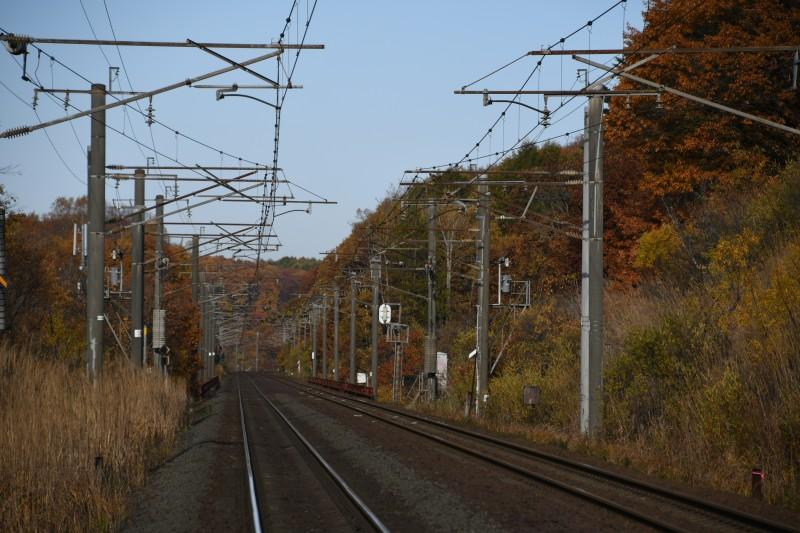 katagiriDSC_4102-1.jpg