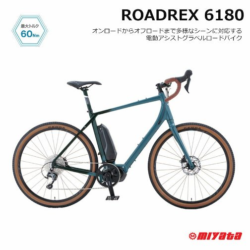 roadrex_6180.jpg
