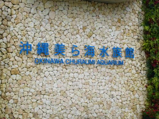 053  美ら海水族館(1)