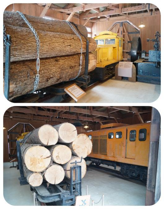 森林鉄道機関庫2(1)