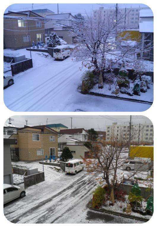 雪1(1)