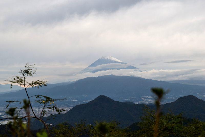 富士見テラスDSC_0046