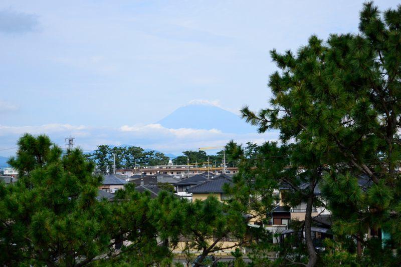 美保の松原展望台DSC_0115