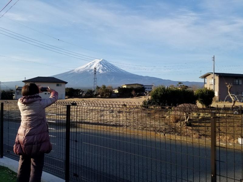 ゆめ富士庭より富士山