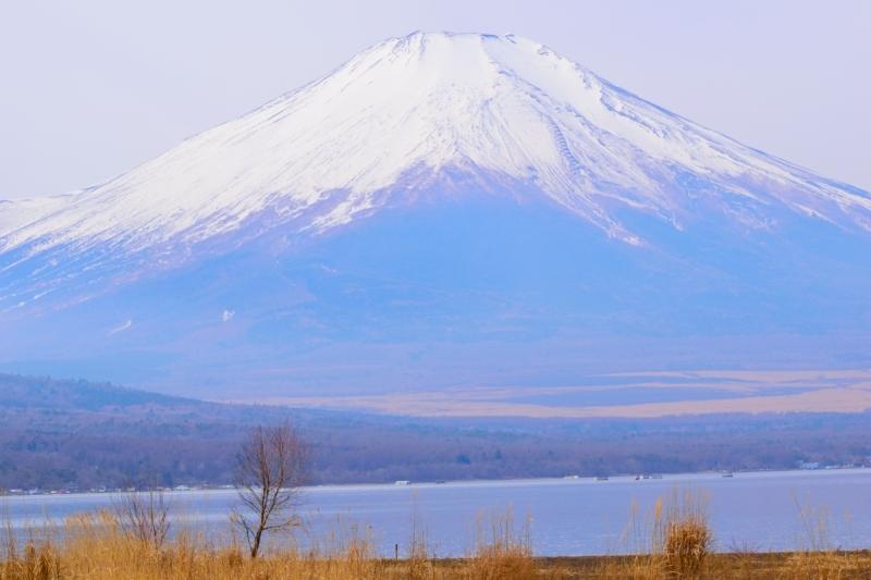 山中湖富士DSC_0020