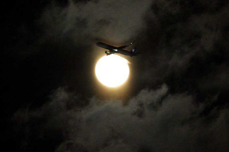 DSC03307十六夜飛行機r