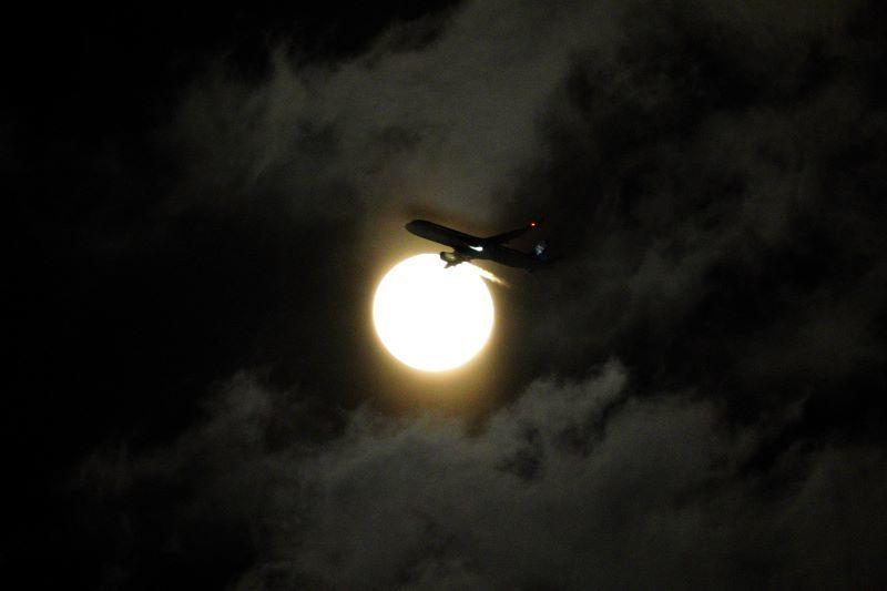 DSC03306十六夜飛行機r