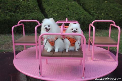 ピンクの遊具