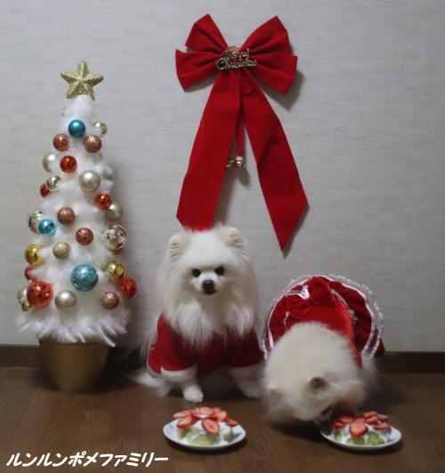 クリスマスフライング
