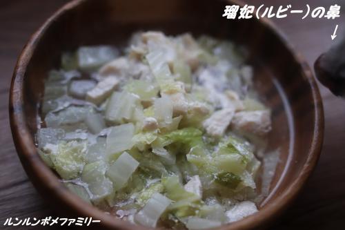 白菜の鶏肉煮