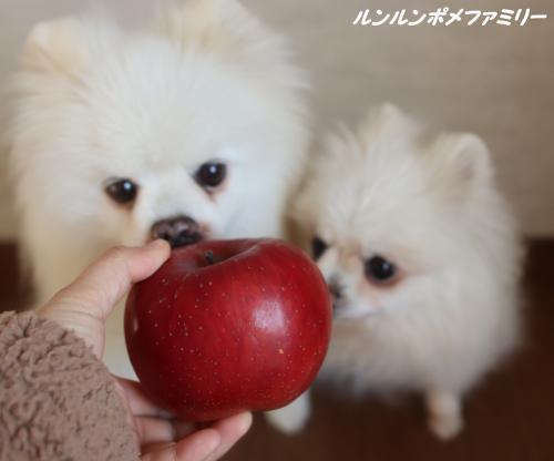 真っ赤なりんご
