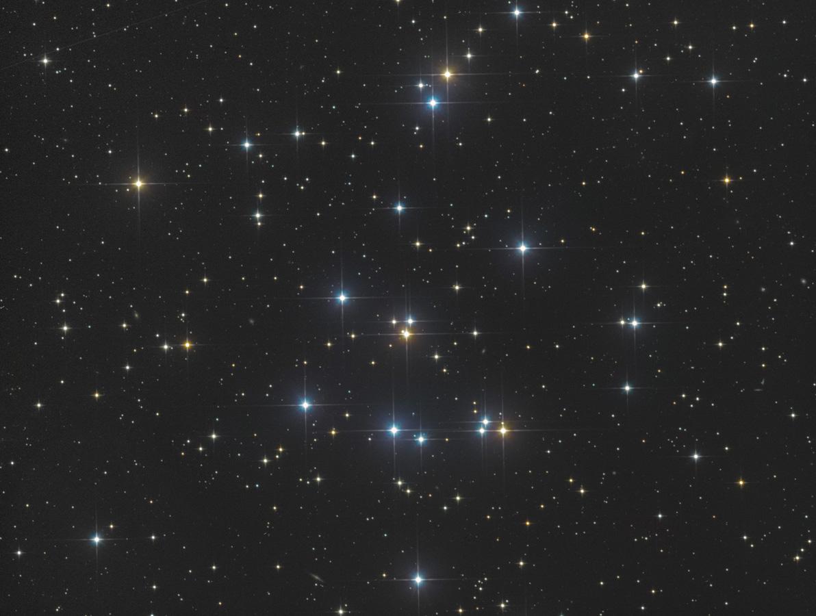 M44-20200105-C8N-ST8300-03.jpg