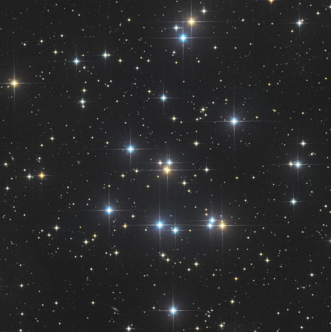 M44-20200105-C8N-ST8300.jpg