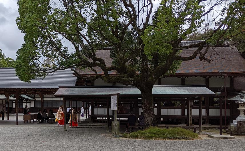 3宗像大社拝殿横