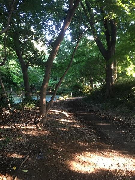 19,08酷暑の日々の公園