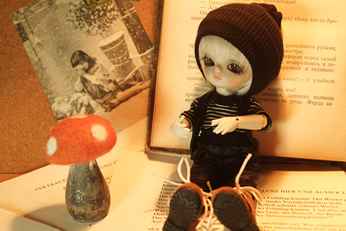 WITHDOLL、Happy Ending Story - Wolf Rudyのルディと、WITHDOLL、Halloween Limited Edition / Black Cat / Butler Pookyのキオ。おそろいの新しいお洋服を買いました。