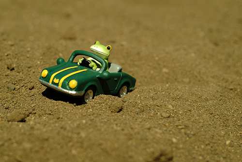ツバキアキラが撮ったカエルのコポー。砂の上を車で疾走するコポタロウ。