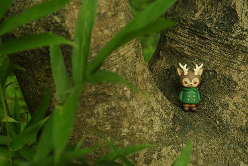 ツバキアキラが撮った、VAG・MORRIS、通称・つのねこ。緑のコートで、葉っぱに紛れ込んでいる、つもり。