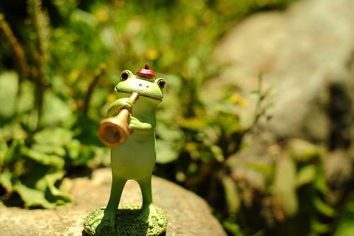 ツバキアキラが撮ったカエルのコポー。明るい日差しの中、陽気にラッパを吹くコポタロウ。