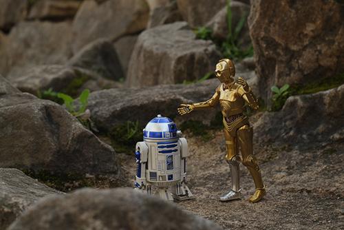 ツバキアキラが撮った、S.H.フィギュアーツのC-3POとR2-D2。極秘任務を遂行したいR2-D2と、その行動に呆れるC-3PO。