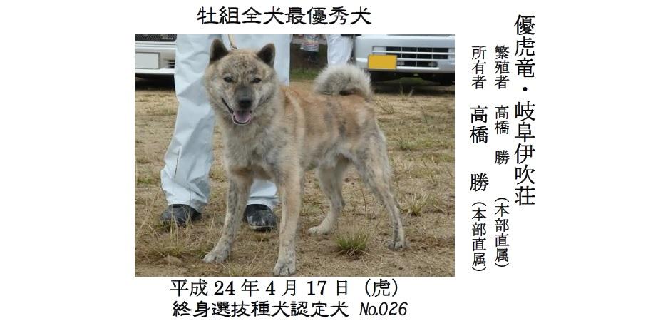 20191110-02-道犬最優秀犬牡