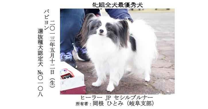 20191110-07-全犬種最優秀犬牝