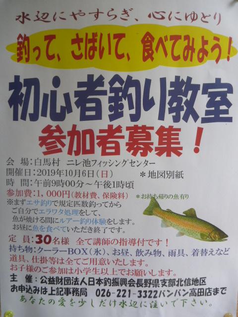 P1120749.jpg