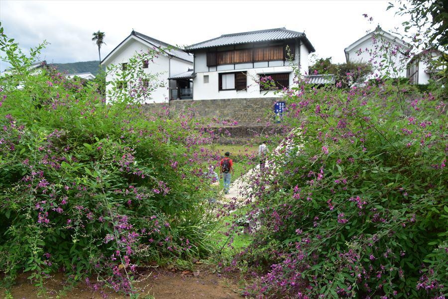 日本遺産4