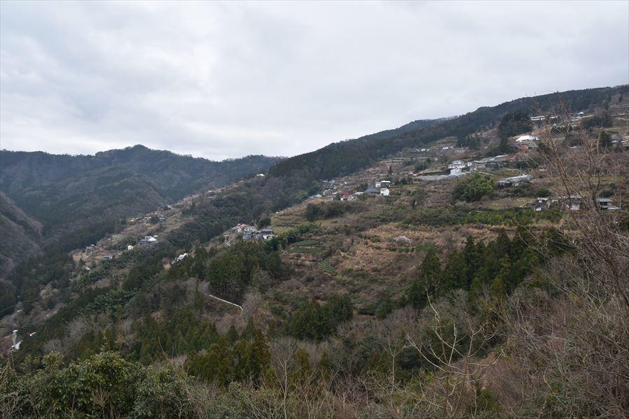 望郷の丘5