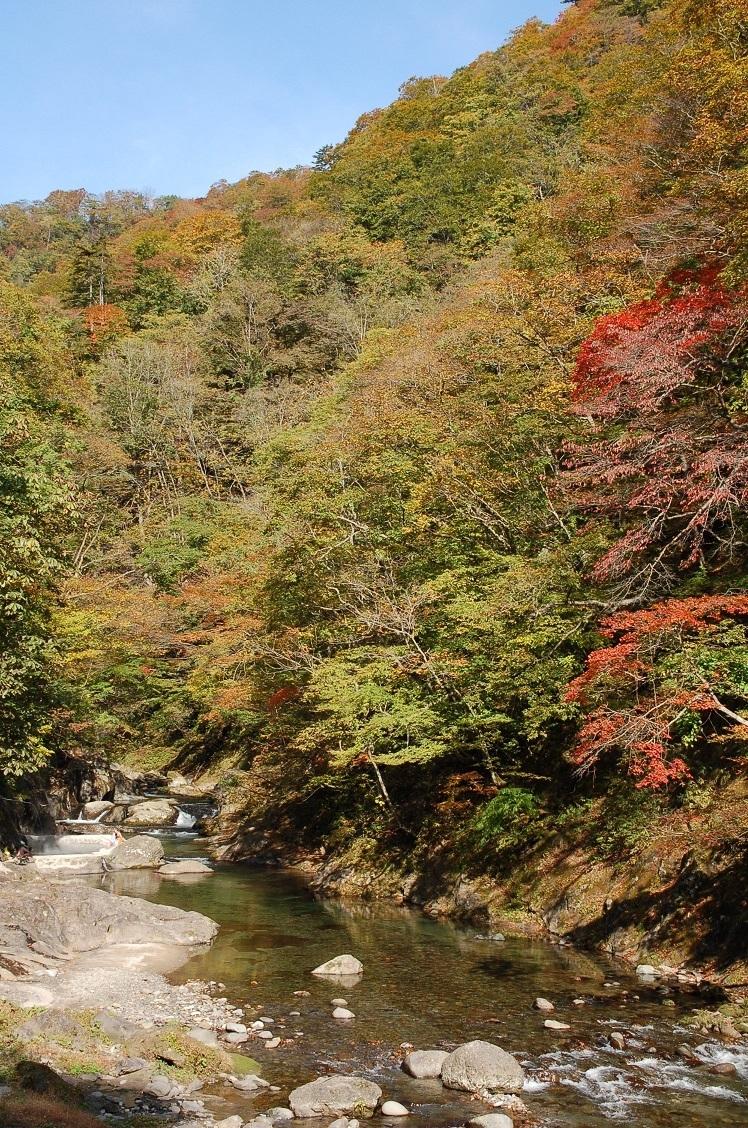 秋の東北.jpg