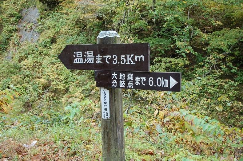 登山道を進む.jpg