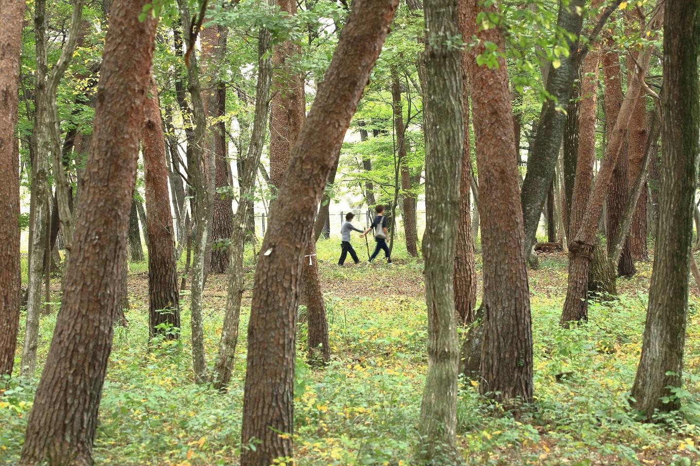 ブログ 公園のお喋りお散歩.jpg