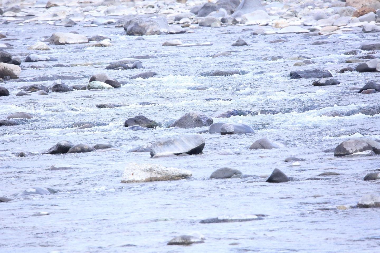 111何の変哲なものでもない川.jpg