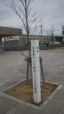 191107_142336.jpg