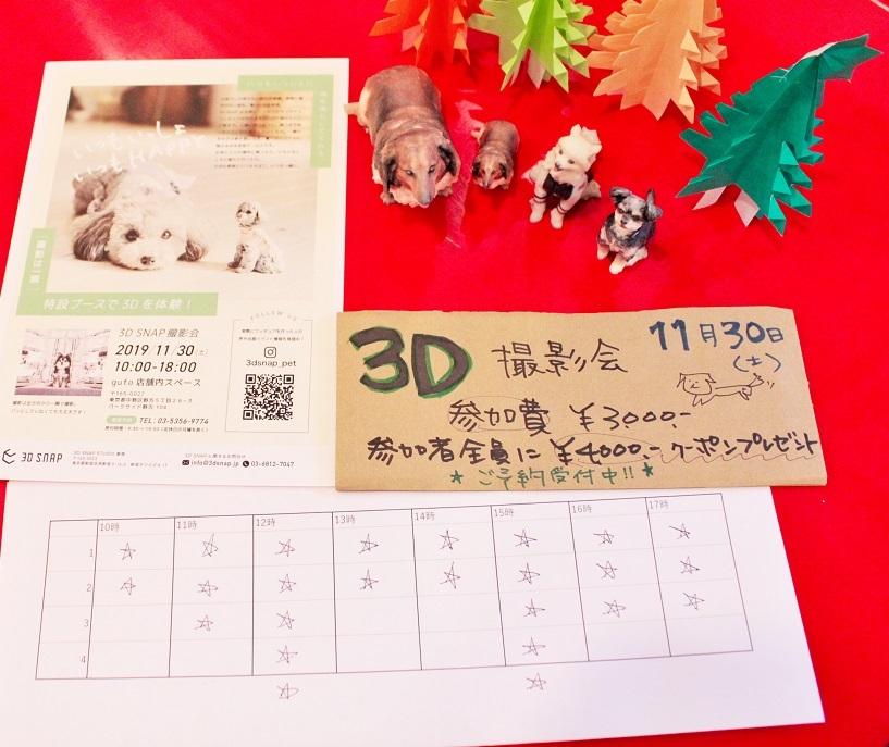 20191128_3D撮影イベント