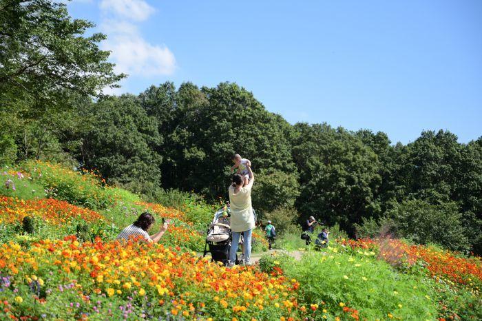 DSC_6265-001里山ガーデン