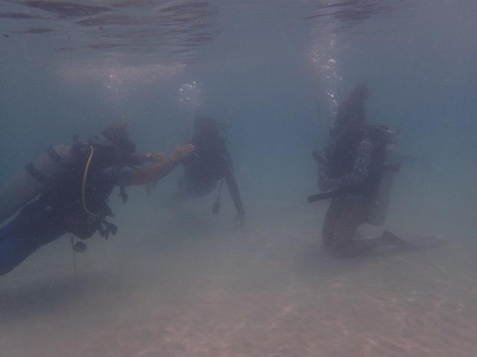 ダイビング講習P8151884